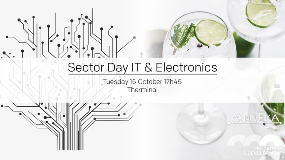 Sector Day - IT & Electronics